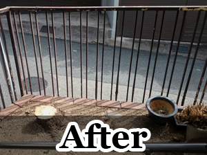 300×224After.5png